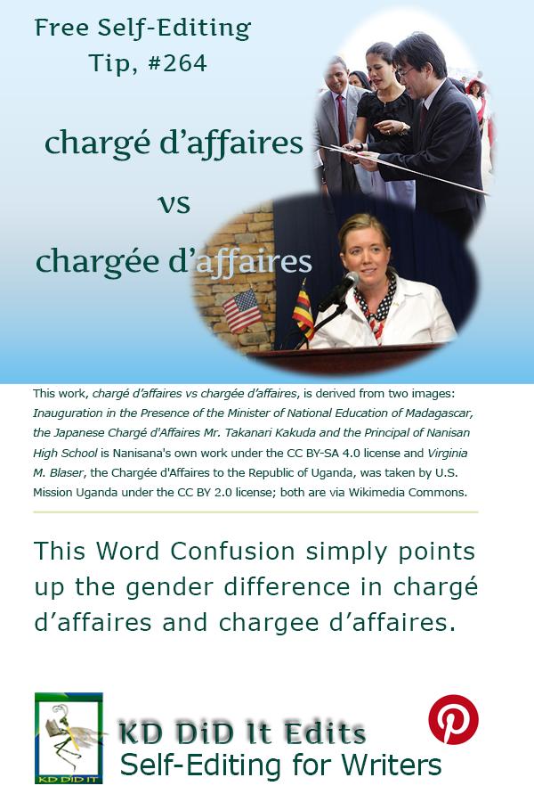 Pinterest pin for Chargé d'affaires versus Chargée d'affaires