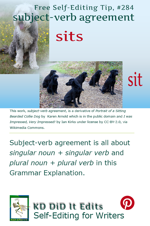 Pinterest pin for Subject-Verb Agreement