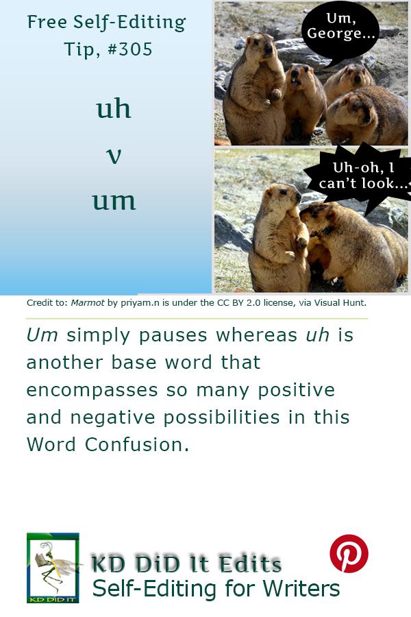 Pinterest pin for Uh versus Um
