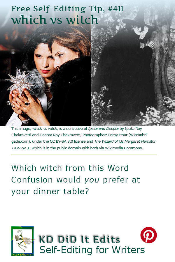 Pinterest pin for Which versus Witch