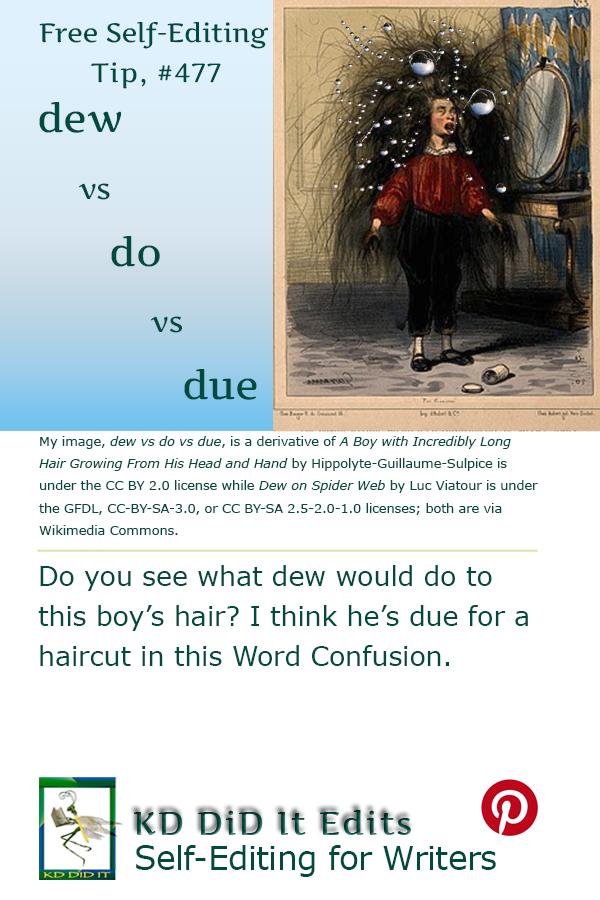 Pinterest pin for Dew vs Do vs Due