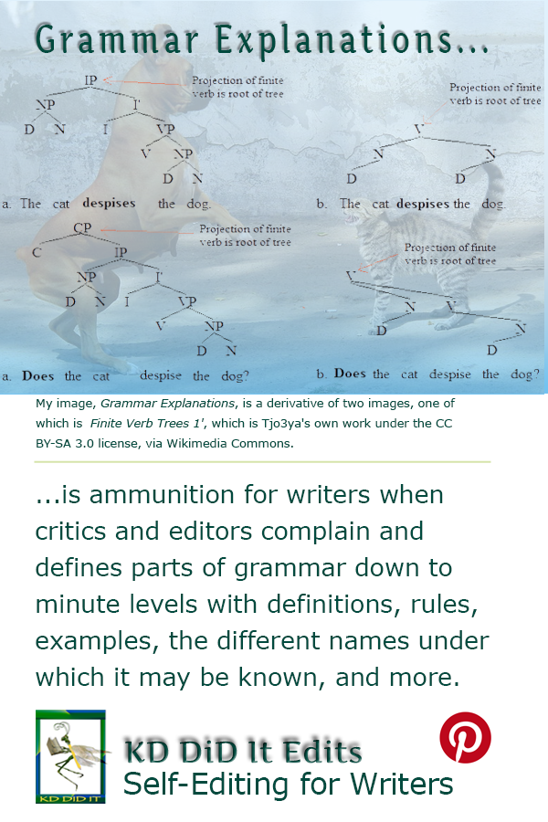 Pinterest pin for Grammar Explanations