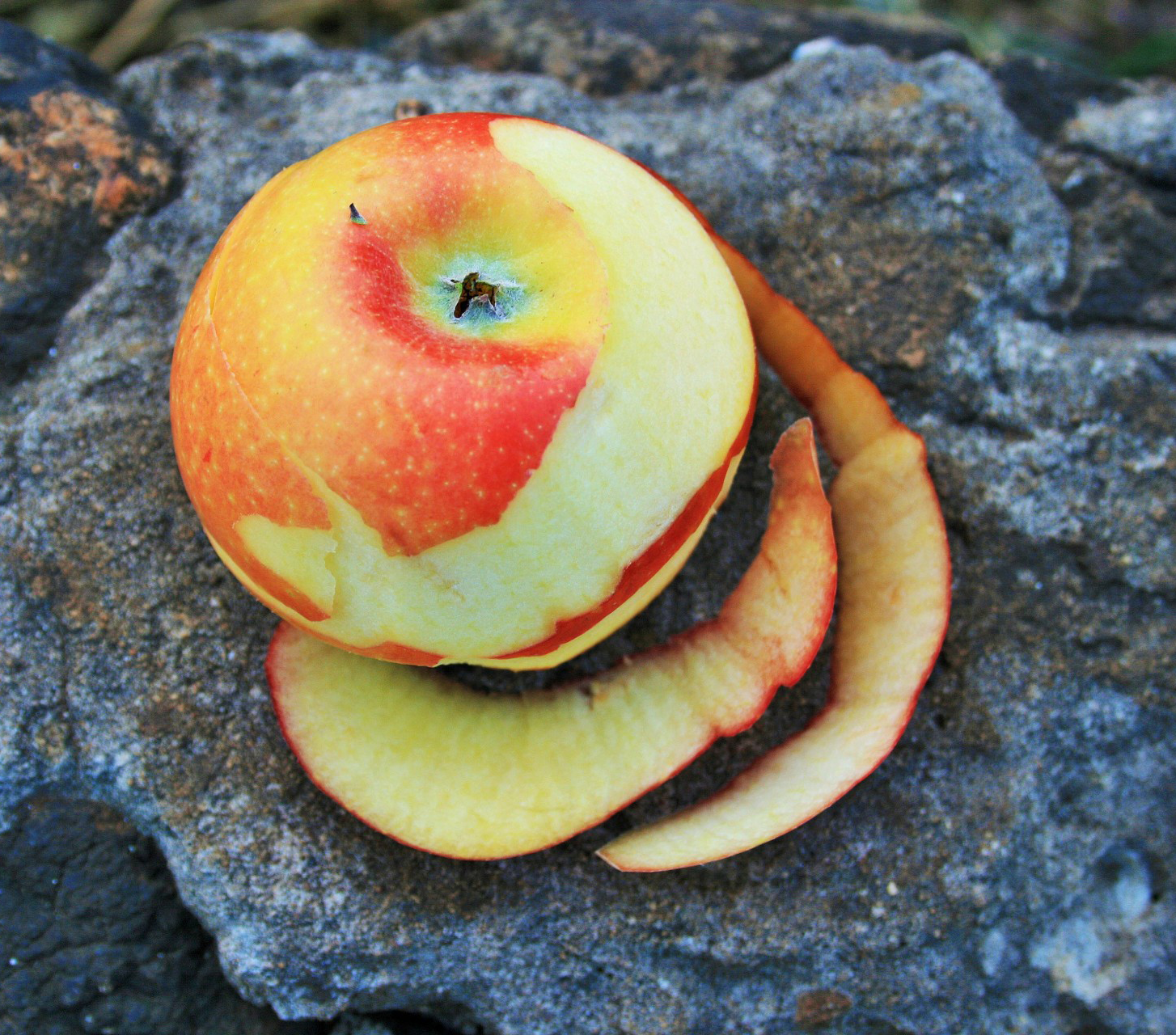 A apple partially pared