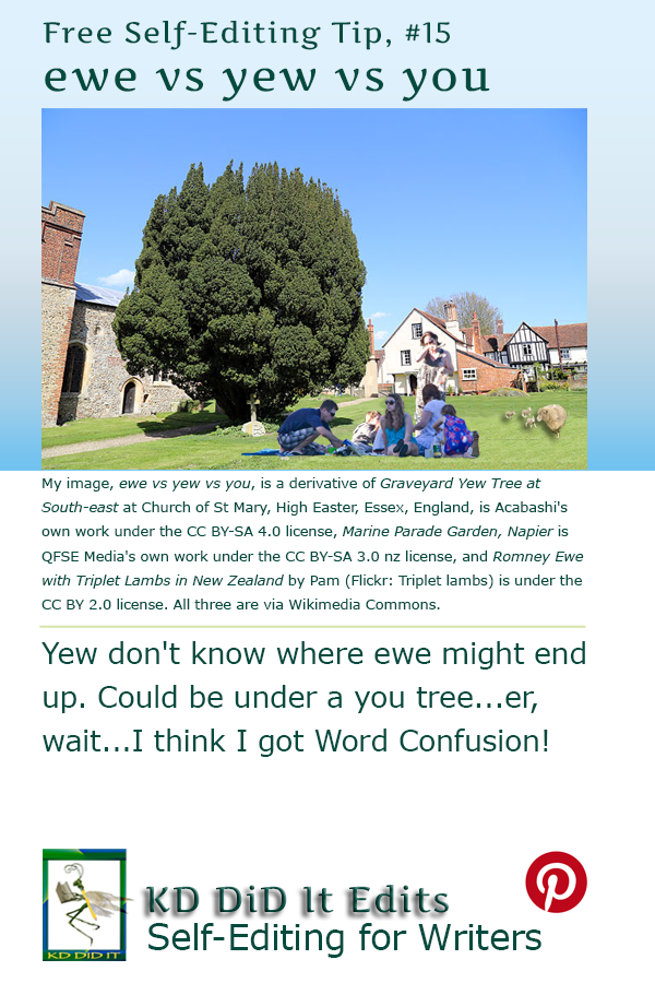 Word Confusion: Ewe vs Yew vs You
