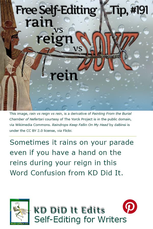 Pinterest pin for Rain vs Reign vs Rein