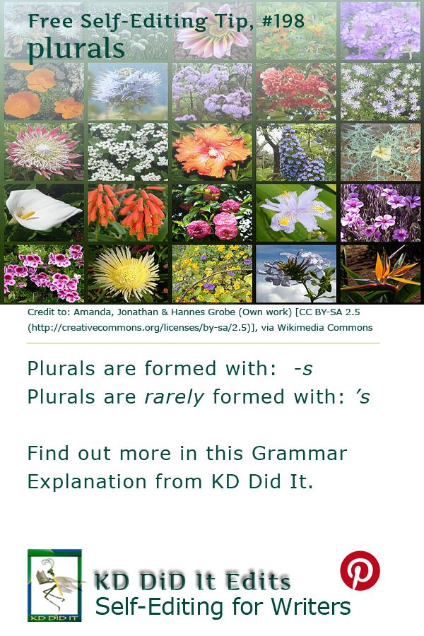 Grammar: Plurals