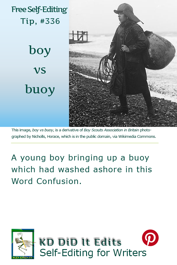 Pinterest pin for Boy versus Buoy