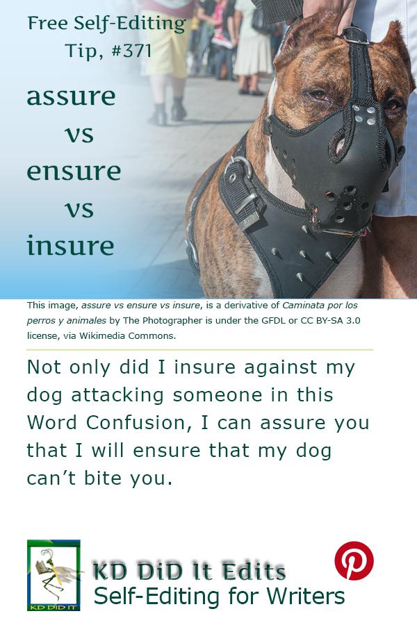 Pinterest pin for Assure vs Ensure vs Insure