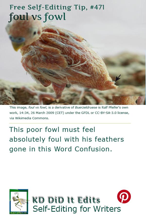 Pinterest pin for Foul versus Fowl