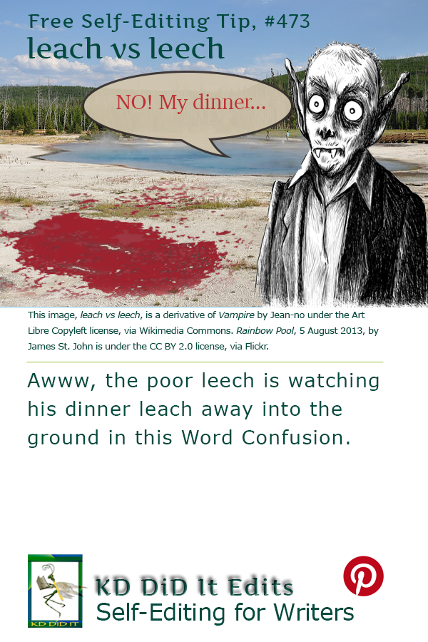 Pinterest pin for Leach versus Leech