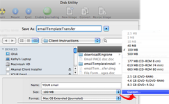 Figure 3. Change the size from 100MB to a more emailable size.